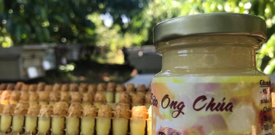 Sữa Ong Chúa BeeU – Trang Trại Ong Gia Đình Ở Bảo Lộc
